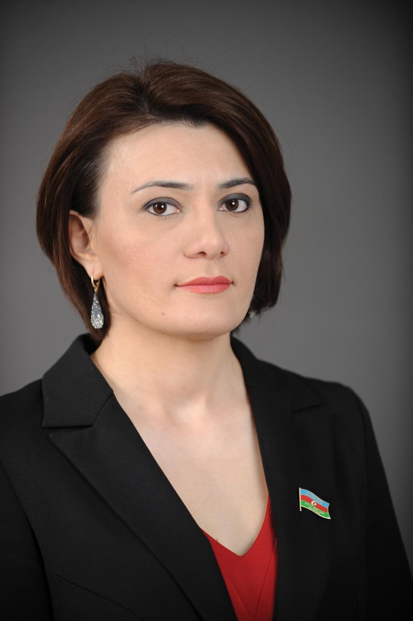 Sona Əliyeva ile ilgili görsel sonucu