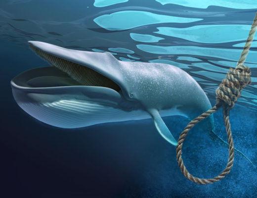 """""""Mavi balina""""dan sonra internetin yeni bəlasının adı açıqlandı – Diqqət, ölüm gətirir – FOTO"""