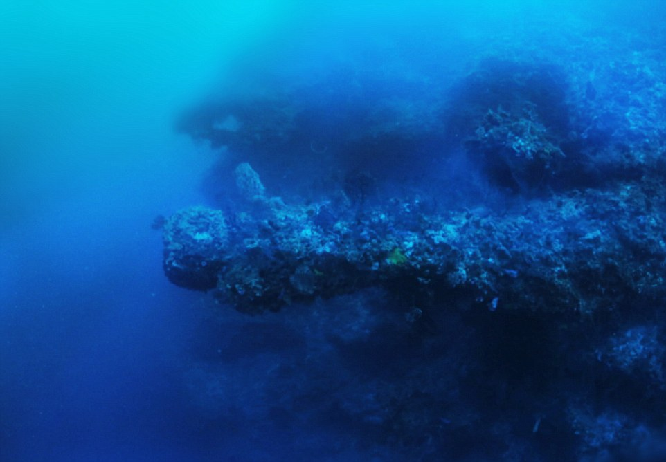 These horizontal structures are massive, each measures as much as 300 feet straight out, the length of a US football field. The explorer also found other bizarre and unexplained formations around the main object, all of which are covered in thick coral which he believes are hundreds if not thousands of years old