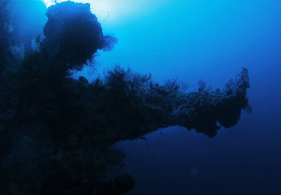 Here, what he describes as the right jutting section of the USO.  According to scientists on Darrell's team, no coral anywhere in the world could grow in this formation naturally, there would have to be an underlying structure to support that type of growth