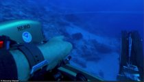 Darrell Miklos and his team discovered the USO (unidentified submerged object) in the Bermuda Triangle close to the Bahamas. He spotted the large obtrusions while exploring the area in a submersible looking for shipwrecks. 'I was trying to identify shipwreck material based on one of the anomaly readings on Gordon's charts when I noticed something that stuck out, that shocked me,' said Miklos in an exclusive interview with DailyMail.com