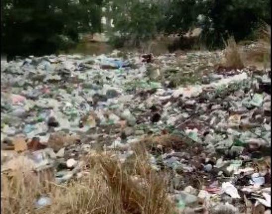 Nabran meşələrindən utancverici görüntülər – VİDEO