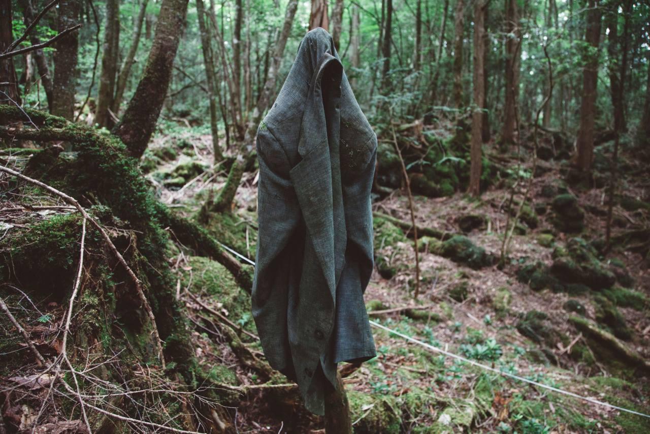 Bu meşəyə gəlib yolunu azanlar intihar edir – İntihar meşəsi (FOTOLAR 23+)