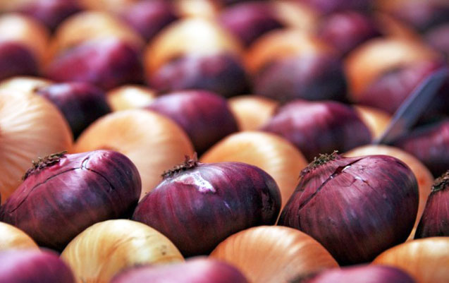 Soğanın qiyməti niyə bahalaşdı? – MÜNASİBƏT