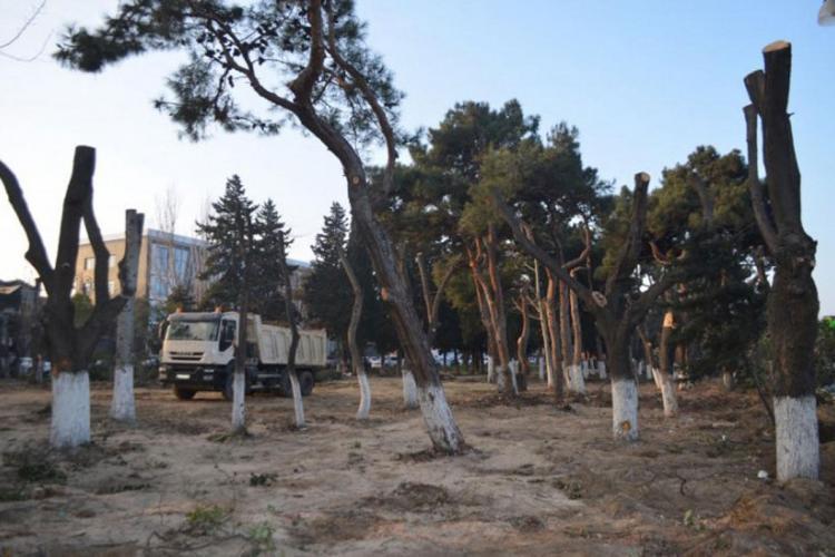 Eldar Əzizov Atatürk parkındakı işlər barədə açıqlama verdi