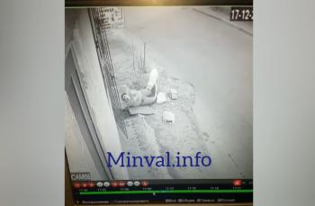 Bakıda sahibli it qıza hücum etdi – Dəhşətli görüntülər – Fotolar, Video (+18)