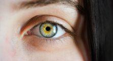 Göz identifikasiyası