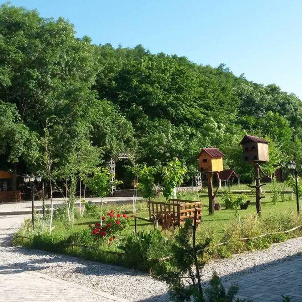 Salyanın keçmiş icra başçısının hektarlarla meşə zolağında salınan dəbdəbəli oteli — FOTOLAR
