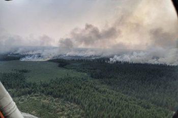 Rusiyada meşə yanğınlarının sahəsi üç milyon hektara çatıb