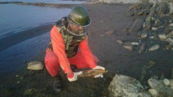 Mingəçevir su anbarının yaxınlığında top mərmisi aşkarlandı – FOTO